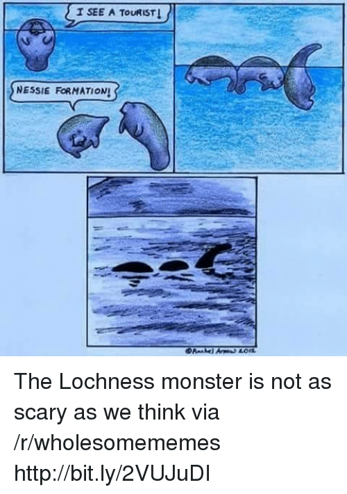 Monster, Http, and Via: T SEE A TOURIST  SNESSIE FORMATIONS The Lochness monster is not as scary as we think via /r/wholesomememes http://bit.ly/2VUJuDI