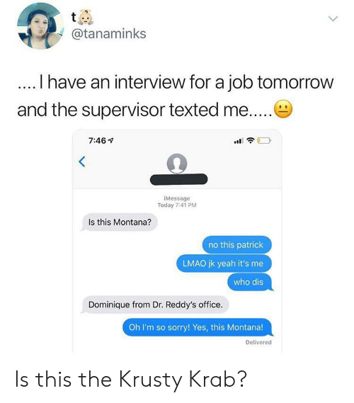 Lmao, Sorry, and Who Dis: t  @tanaminks  I have an interview for a job tomorrow  and the supervisor texted me....  7:46  iMessage  Today 7:41 PM  Is this Montana?  no this patrick  LMAO jk yeah it's me  who dis  Dominique from Dr. Reddy's office.  Oh I'm so sorry! Yes, this Montana!  Delivered Is this the Krusty Krab?