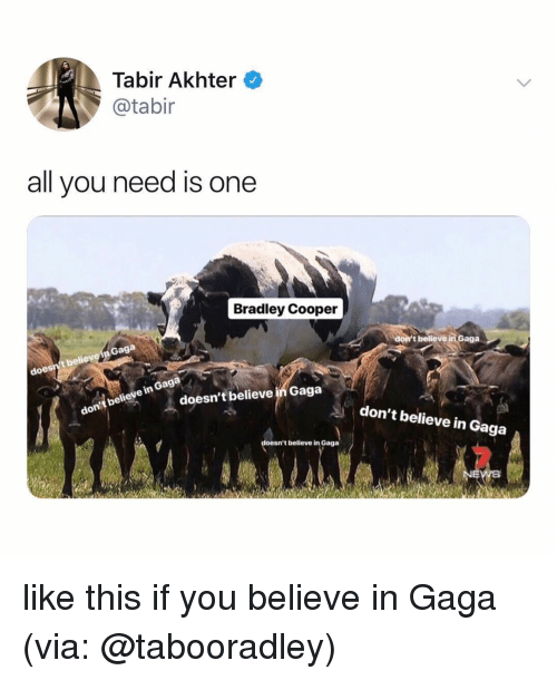 Bradley Cooper: Tabir Akhter  @tabir  all you need is one  Bradley Cooper  Gaga  t believe  doe  t believe in Gaga  in Gaga  believe  don  doesn't believe in Gaga  don't believe in Gaga  sn't believe in Gaga like this if you believe in Gaga (via: @tabooradley)