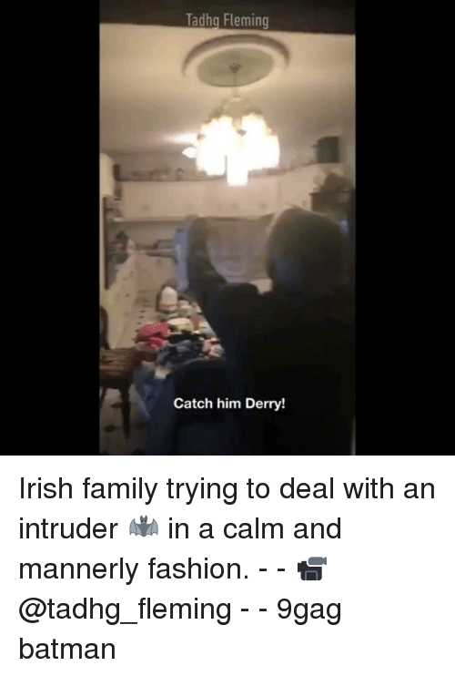 9gag, Batman, and Family: Tadhg Fleming  Catch him Derry! Irish family trying to deal with an intruder 🦇 in a calm and mannerly fashion. - - 📹@tadhg_fleming - - 9gag batman