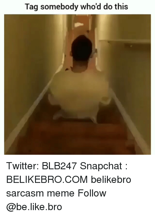 Be Like, Meme, and Memes: Tag somebody who'd do this Twitter: BLB247 Snapchat : BELIKEBRO.COM belikebro sarcasm meme Follow @be.like.bro