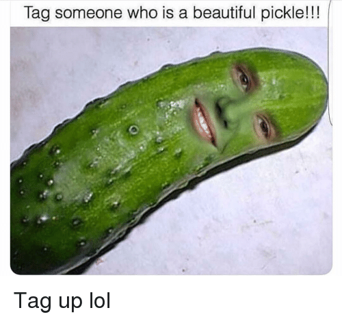 Beautiful, Funny, and Lol: Tag someone who is a beautiful pickle!!! Tag up lol