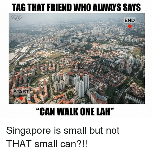 "Memes, Singapore, and 🤖: TAG THAT FRIEND WHO ALWAYS SAYS  END  START  ""CAN WALK ONE LAH"" Singapore is small but not THAT small can?!!"