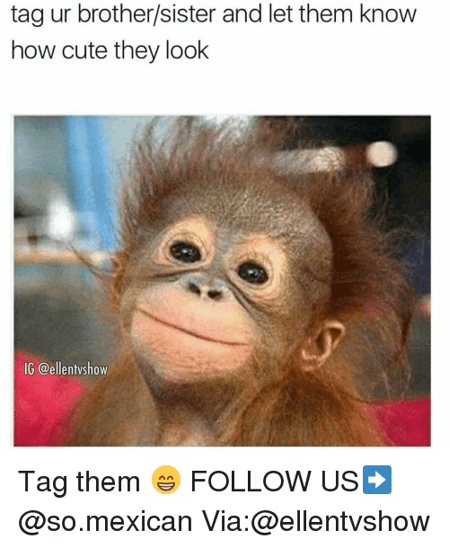 brothers sisters: tag ur brother/sister and let them know  how cute they look  IG @ellentvshow Tag them 😁 FOLLOW US➡️ @so.mexican Via:@ellentvshow