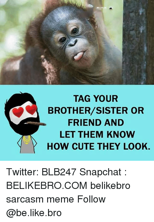 brothers sisters: TAG YOUR  BROTHER/SISTER OR  FRIEND AND  LET THEM KNow  HOW CUTE THEY LOOK. Twitter: BLB247 Snapchat : BELIKEBRO.COM belikebro sarcasm meme Follow @be.like.bro