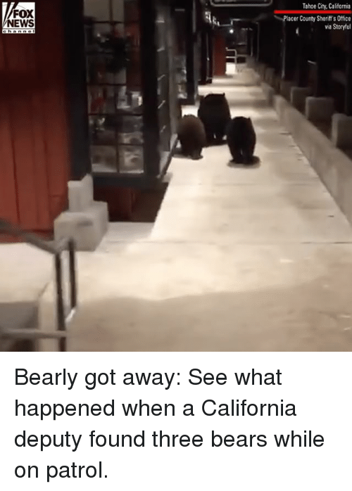 Memes, News, and Bears: Tahoe City, California  FOX  NEWS  Placer County Sheriff's Office  via Storyful Bearly got away: See what happened when a California deputy found three bears while on patrol.