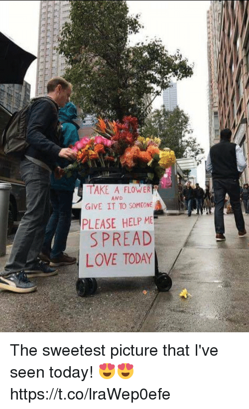 Someone Please Help: TAKE A FLOWER  GIVE IT TO SOMEONE  PLEASE HELP M  SPREAD  LOVE TODAY  AND The sweetest picture that I've seen today! 😍😍 https://t.co/lraWep0efe