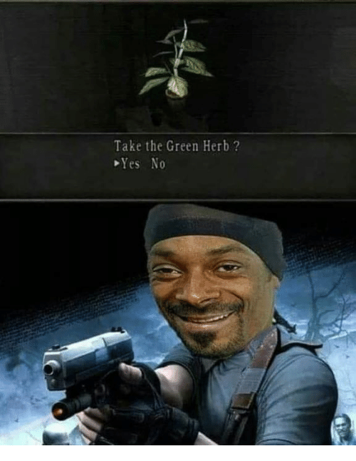 Memes, 🤖, and Yes: Take the Green Herb ?  Yes No
