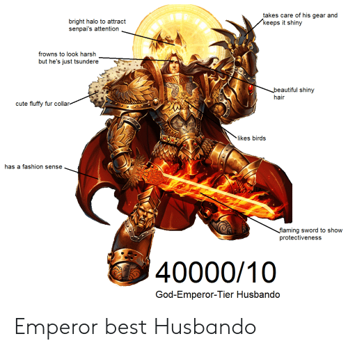 Senpais: takes care of his gear and  keeps it shiny  bright halo to attract  senpai's attention  frowns to look harsh  but he's just tsundere  beautiful shiny  hair  cute fluffy fur collar  likes birds  has a fashion sense  flaming sword to show  protectiveness  40000/10  God-Emperor-Tier Husbando Emperor best Husbando