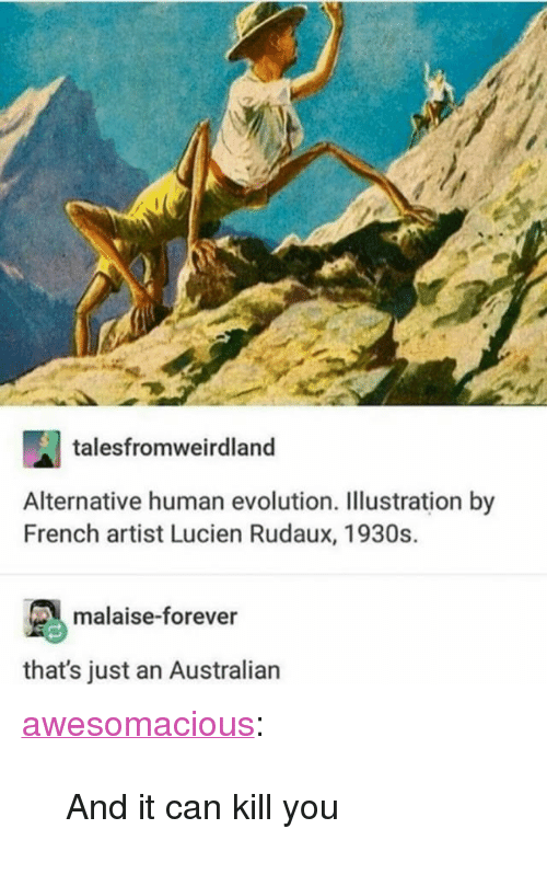 """Tumblr, Blog, and Evolution: talesfromweirdland  Alternative human evolution. Illustration by  French artist Lucien Rudaux, 1930s.  malaise-forever  that's just an Australian <p><a href=""""http://awesomacious.tumblr.com/post/167301771603/and-it-can-kill-you"""" class=""""tumblr_blog"""">awesomacious</a>:</p>  <blockquote><p>And it can kill you</p></blockquote>"""