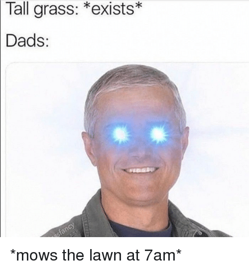 Grass, Dads, and  Tall: Tall  grass:  *exists  Dads: *mows the lawn at 7am*