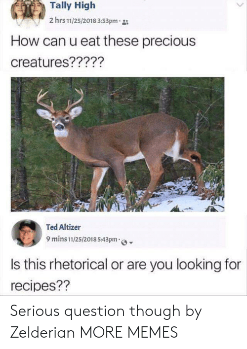 Recipes: Tally High  2 hrs 11/25/2018 3:53pm  How can u eat these precious  creatures?????  Ted Altizer  9 mins 11/25/2018 5:43pm  Is this rhetorical or are you looking for  recipes?? Serious question though by Zelderian MORE MEMES