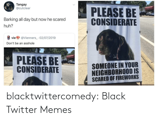 scared: Tangay  @cutclear  PLEASE BE  CONSIDERATE  Barking all day but now he scared  huh?  vie  @Vienners_· 02/07/2019  Don't be an asshole  PLEASE BE  CONSIDERATE  SOMEONE IN YOUR  NEIGHBORHOOD IS  SCARED OF FIREWORKS blacktwittercomedy:  Black Twitter Memes