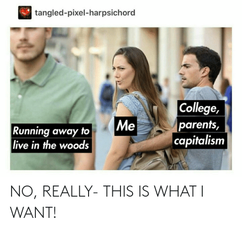 College, Parents, and Capitalism: tangled-pixel-harpsichord  College,  parents,  capitalism  Me  Running away to  live in the woods NO, REALLY- THIS IS WHAT I WANT!