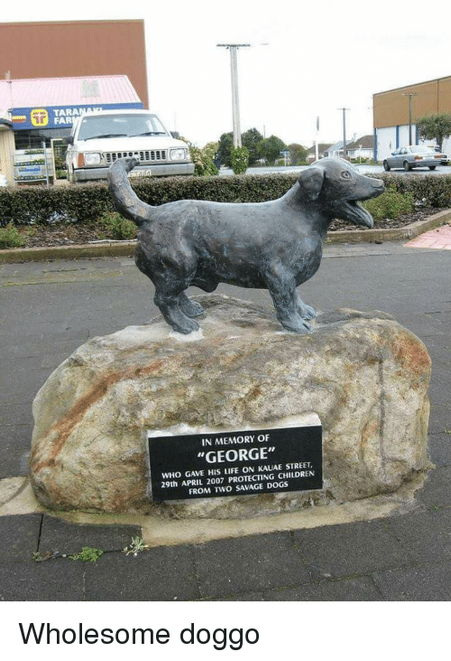 "Children, Dogs, and Life: TARA  IN MEMORY OF  ""GEORGE""  WHO GAVE HIS LIFE ON KAUAE STREET  29th APRIL 2007 PROTECTING CHILDREN  FROM TWO SAVAGE DOGS Wholesome doggo"
