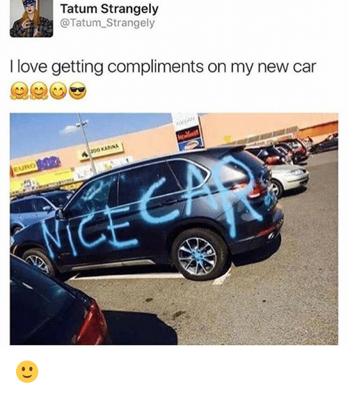 Love, Memes, and 🤖: Tatum Strangely  @Tatum_Strangely  I love getting compliments on my new car  KARINA 🙂