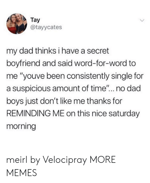 """Dad, Dank, and Memes: Tay  @tayycates  my dad thinks i have a secret  boyfriend and said word-for-word to  me """"youve been consistently single for  a suspicious amount of time... no dad  boys just don't like me thanks for  REMINDING ME on this nice saturday  morning meirl by Velocipray MORE MEMES"""