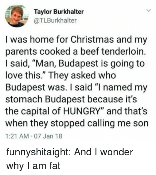"""Beef, Christmas, and Hungry: Taylor Burkhalter  @TLBurkhalter  I was home for Christmas and my  parents cooked a beef tenderloin.  I said, """"Man, Budapest is going to  love this."""" They asked who  Budapest was. I said """"I named my  stomach Budapest because it's  the capital of HUNGRY"""" and that's  when they stopped calling me son  1:21 AM 07 Jan 18 funnyshitaight: And I wonder why I am fat"""