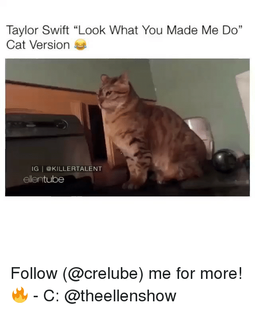 "Memes, Taylor Swift, and 🤖: Taylor Swift ""Look What You Made Me Do""  Cat Version  IG @KILLERTALENT  ellentube Follow (@crelube) me for more! 🔥 - C: @theellenshow"