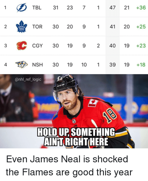 Logic, Memes, and National Hockey League (NHL): TBL 31 23 747 21 +36  2  TOR 30 20 941 20 +25  LEA  CGY 30 19 9 240 19 +23  4  NSH 30 19 10139 19+18  @nhl_ref_logic  CM  HOLD UP SOMETHING  AIN'T RIGHTHER Even James Neal is shocked the Flames are good this year