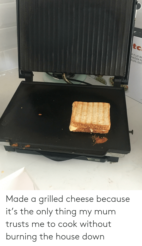 ent: tc  R PLUS WI  NEIDER PL  ALEN, ENT Made a grilled cheese because it's the only thing my mum trusts me to cook without burning the house down
