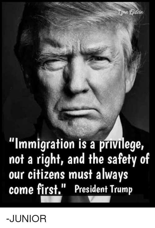 "Memes, Immigration, and Trump: tcin  ""Immigration is a privilege,  not a right, and the safety of  our citizens must always  come first,"" President Trump -JUNIOR"