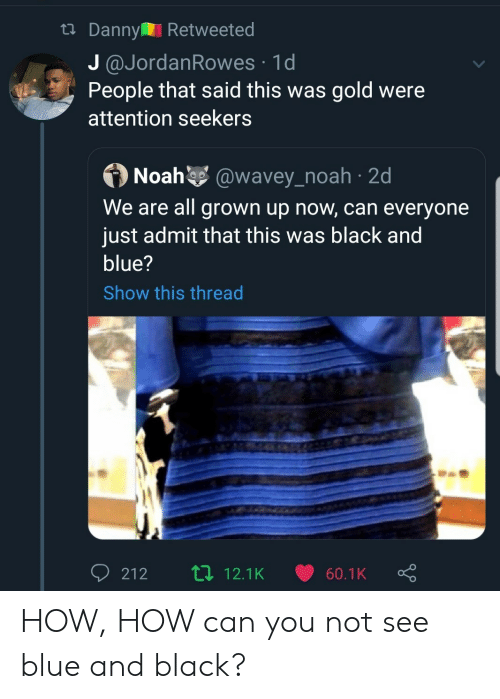 Noah: tDanny Retweeted  J @JordanRowes 1d  People that said this was gold were  attention seekers  Noah @wavey_noah 2d  We are all grown up now, can everyone  just admit that this was black and  blue?  Show this thread  Li 12.1K  212  60.1K HOW, HOW can you not see blue and black?
