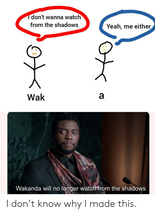 Wakanda: Tdon't wanna watch  from the shadows  Yeah, me either  a  Wak  Wakanda will no longer watch from the shadows  CO I don't know why I made this.