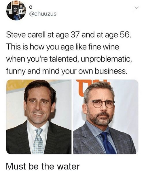 Funny, Memes, and Steve Carell: TEA  N@chuuzus  Steve carell at age 37 and at age 56.  This is how you age like fine wine  when you're talented, unproblematic,  funny and mind your own business. Must be the water