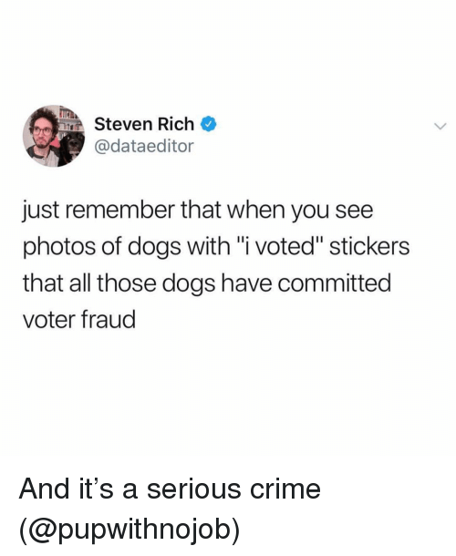 "Crime, Dogs, and Girl Memes: TEA  Steven Rich  @dataeditor  just remember that when you see  photos of dogs with ""i voted"" stickers  that all those dogs have committed  voter fraud And it's a serious crime (@pupwithnojob)"
