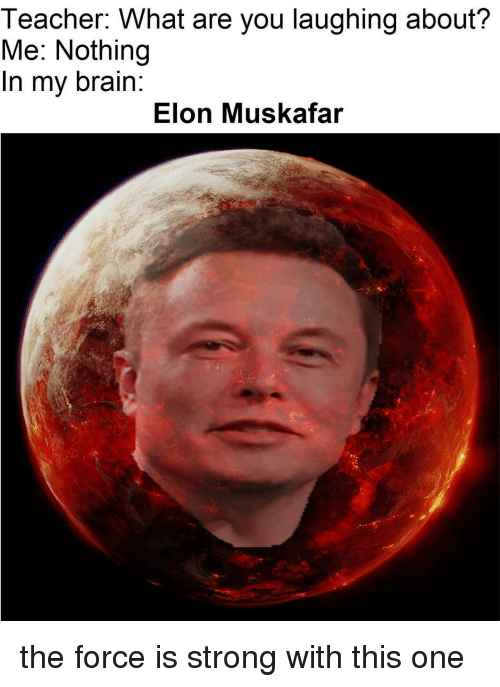 Force Is Strong: Teacher. What are you laughing about?  Me: Nothing  In my brain:  Elon Muskafar the force is strong with this one