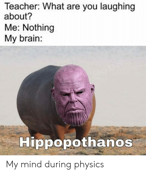 Memes, Teacher, and Brain: Teacher: What are you laughing  about?  Me: Nothing  My brain:  Hippopothanos My mind during physics