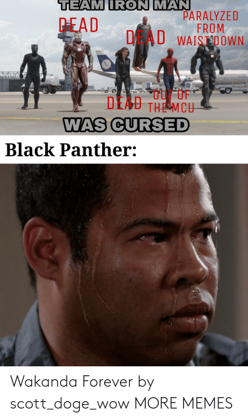 Black Panther: TEAM IRON MAN  PARALYZED  FROM  DAU WAISDOWN  PEAD  DEAU THE MCU  WAS CURSED  Black Panther: Wakanda Forever by scott_doge_wow MORE MEMES