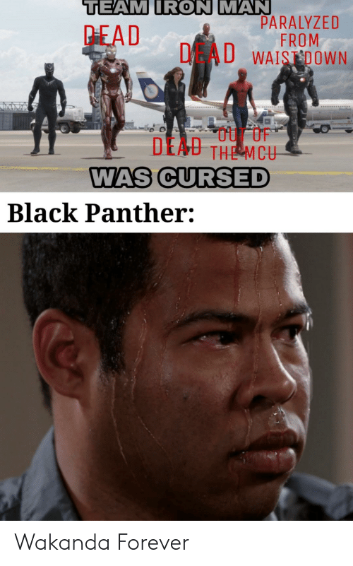 Black Panther: TEAM IRON MAN  PARALYZED  FROM  DAU WAISDOWN  PEAD  DEAU THE MCU  WAS CURSED  Black Panther: Wakanda Forever