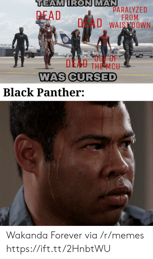 Black Panther: TEAM IRON MAN  PARALYZED  FROM  DAU WAISDOWN  PEAD  DEAU THE MCU  WAS CURSED  Black Panther: Wakanda Forever via /r/memes https://ift.tt/2HnbtWU
