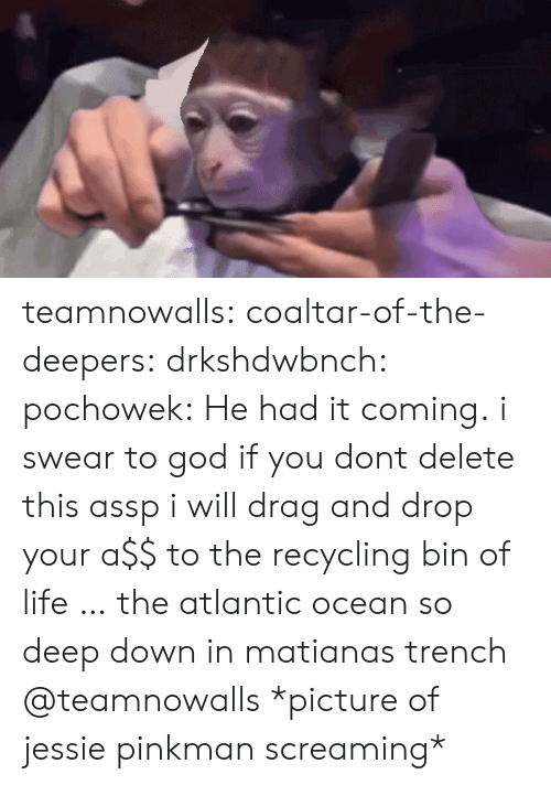 God, Life, and Target: teamnowalls: coaltar-of-the-deepers:   drkshdwbnch:  pochowek:  He had it coming.  i swear to god if you dont delete this assp i will drag and drop your a$$ to the recycling bin of life … the atlantic ocean so deep down in matianas trench   @teamnowalls    *picture of jessie pinkman screaming*