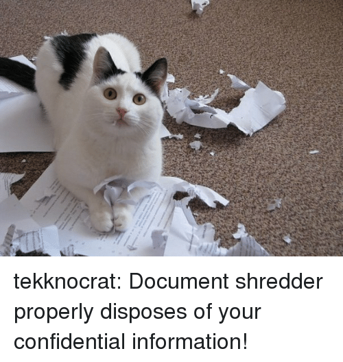 Target, Tumblr, and Blog: tekknocrat: Document shredder properly disposes of your confidential information!
