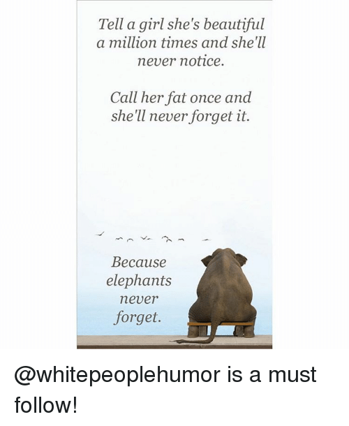 Memes, Elephant, and Elephants: Tell a girl she's beautiful  a million times and she'll  never notice.  Call her fat once and  she'll never forget it.  Because  elephants  never  forget. @whitepeoplehumor is a must follow!