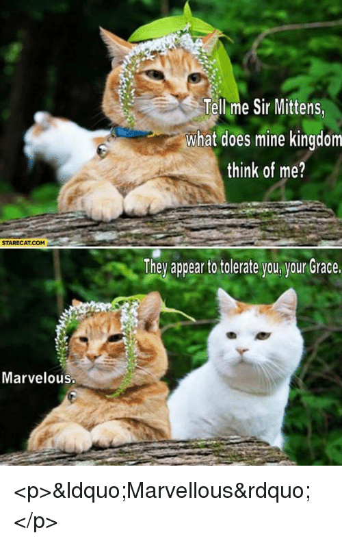 "What Does, Marvelous, and Kingdom: Tell me Sir Mittens  what does mine kingdom  think of me?  STARECAT.COM  They appea to tolerate you ygur Grace  Marvelous <p>""Marvellous""</p>"