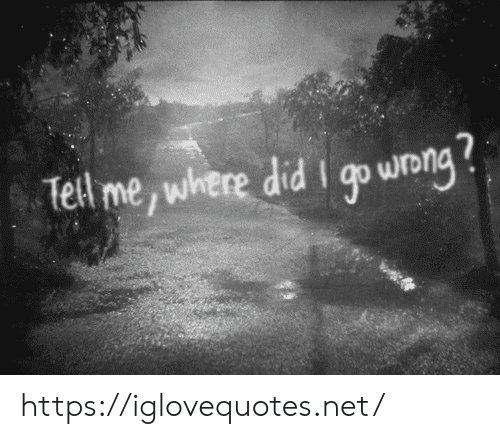Net, Did, and Wong: Tell me, where did I go wong https://iglovequotes.net/