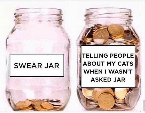 Cats, Memes, and 🤖: TELLING PEOPLE  ABOUT MY CATS  WHEN I WASN'T  SWEAR JAR  ASKED JAR