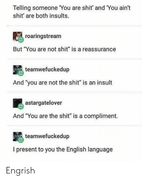 "Shit, English, and Insults: Telling someone You are shit' and You ain't  shit' are both insults.  roaringstream  But ""You are not shit"" is a reassurance  teamwefuckedup  And ""you are not the shit"" is an insult  astargatelover  And ""You are the shit"" is a compliment.  teamwefuckedup  I present to you the English language Engrish"