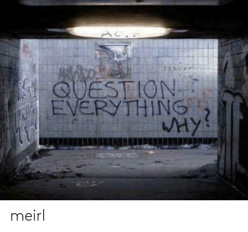 MeIRL, Question, and Everything: TEN  QUESTION  EVERYTHING  HY meirl