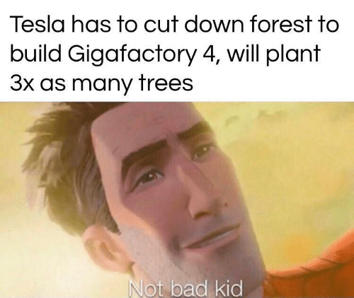 forest: Tesla has to cut down forest to  build Gigafactory 4, will plant  3x as many trees  Not bad kid