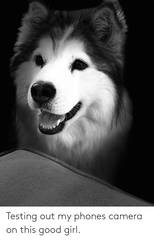 Good: Testing out my phones camera on this good girl.