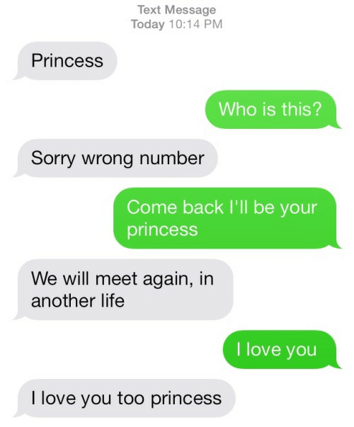 Life, Love, and Sorry: Text Message  Today 10:14 PM  Princess  Who is this?  Sorry wrong number  Come back I'll be your  princess  We will meet again, in  another life  I love you  I love you too princess