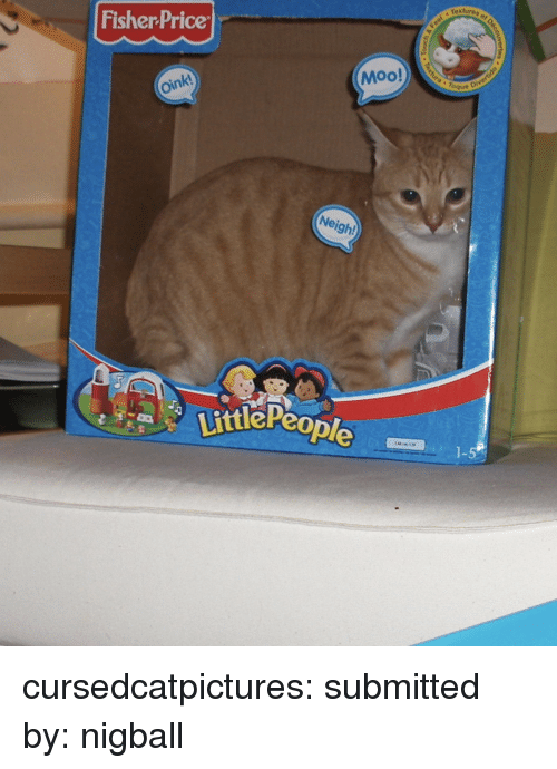 """Tumblr, Blog, and Fisher Price: textures o  Fisher Price  Moo!  """" Toque  oink  Neigh!  ttlePeo  1-5 cursedcatpictures:  submitted by: nigball"""