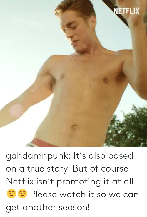 Netflix, True, and Tumblr: TFLIX gahdamnpunk: It's also based on a true story! But of course Netflix isn't promoting it at all 😒😒 Please watch it so we can get another season!