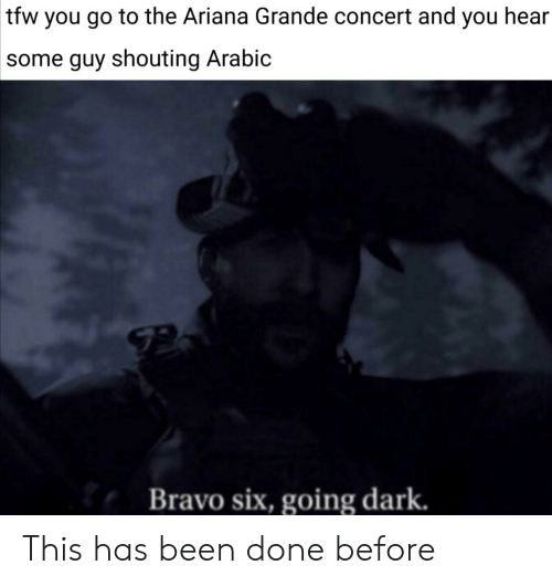 Ariana Grande, Tfw, and Bravo: tfw you go to the Ariana Grande concert and you hear  some guy shouting Arabic  Bravo six, going dark. This has been done before