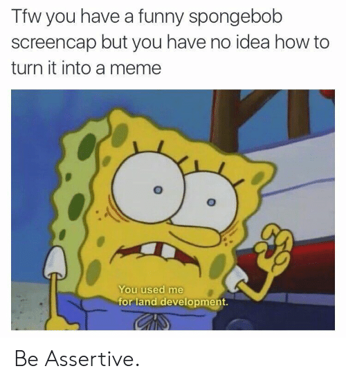 Assertive: Tfw you have a funny spongebob  screencap but you have no idea how to  turn it into a memee  You used me  for land development. Be Assertive.